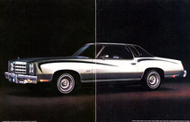 1447_1977_chevrolet_monte_carlo-02_small