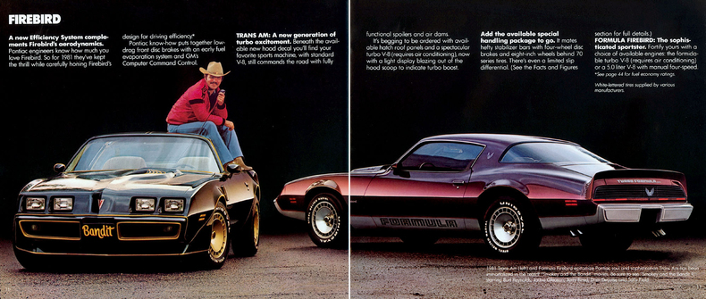 1981 pontiac firebird my classic garage rh myclassicgarage com 1981 pontiac trans am engines 1981 pontiac trans am special edition