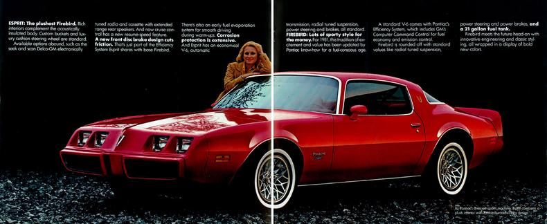 Shelby F150 For Sale >> 1981 Pontiac FIrebird | My Classic Garage