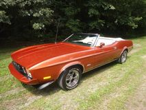 1973 Ford Mustang For Sale  MCG Marketplace