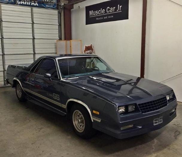1984 Chevrolet Camaro Ss Post Mcg Social