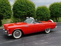 Ford Thunderbird