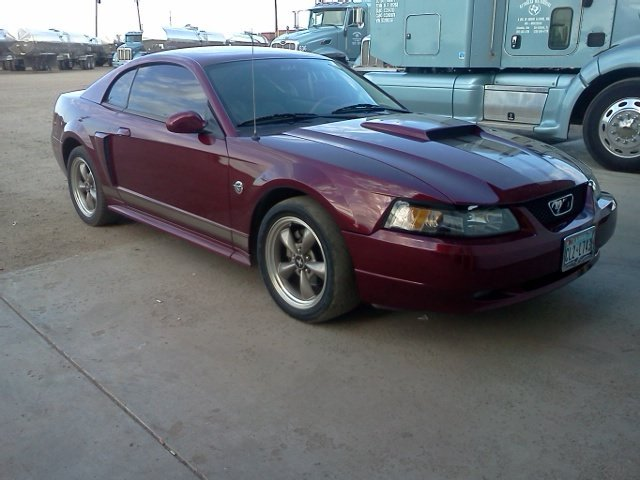 maroon 2004 ford mustang 40th anniversary stage 3 for sale mcg marketplace. Black Bedroom Furniture Sets. Home Design Ideas